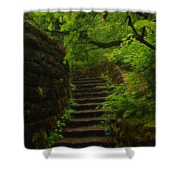 A Stairway To The Green Shower Curtain