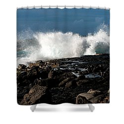 A Stormy Day Shower Curtain by Sabine Edrissi