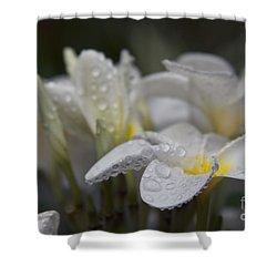 A Subtle Truth Shower Curtain by Sharon Mau