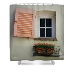 A Sweet Shuttered Window Shower Curtain by Lainie Wrightson