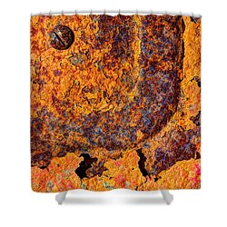 A Tad Rusty Shower Curtain by Heidi Smith