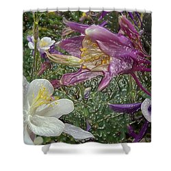 a taste of dew i do and PCC  garden too     GARDEN IN SPRING MAJOR Shower Curtain
