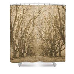 A Thousand Words Shower Curtain by Brett Pfister