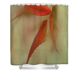 Shower Curtain featuring the photograph A Touch Of Autumn by Annie Snel