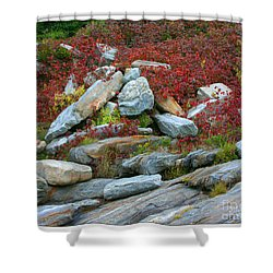 A Touch Of Color Shower Curtain by Mariarosa Rockefeller