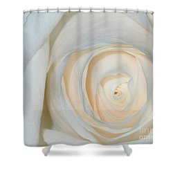A Touch Of Peach Shower Curtain by Sami Martin