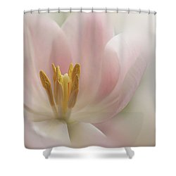 Shower Curtain featuring the photograph A Touch Of Pink by Annie Snel
