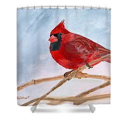 Shower Curtain featuring the painting A Touch Of Red by Lynne Reichhart