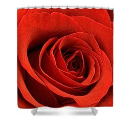 A Touch Of Red Velvet Shower Curtain by Bruce Bley