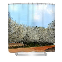 Shower Curtain featuring the photograph A Touch Of Spring by Kathy Baccari