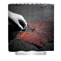 A Treasure To One Shower Curtain by Trish Mistric