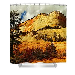 A Tree And Orange Hill Shower Curtain by Jeff Swan