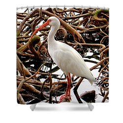 A Twisted Place To Rest Shower Curtain by Rita Mueller