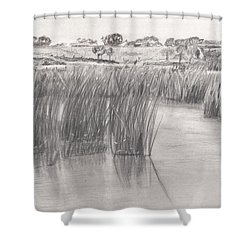 A View From Wally Tonkin's Landing Shower Curtain