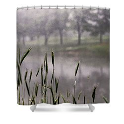 A View In The Mist Shower Curtain by Bruce Patrick Smith