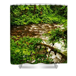 A View Of Eagle Creek Shower Curtain by Jeff Swan