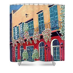 A Visit To New Orleans Shower Curtain by Suzanne Theis