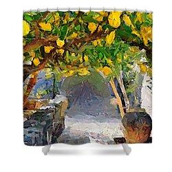 A Voult Of Lemons Shower Curtain