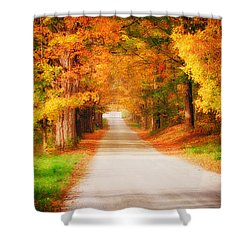 A Walk Along The Golden Path Shower Curtain by Jeff Folger