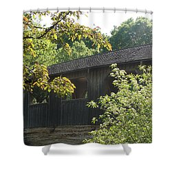 Shower Curtain featuring the photograph A Walk In The Park by Tiffany Erdman