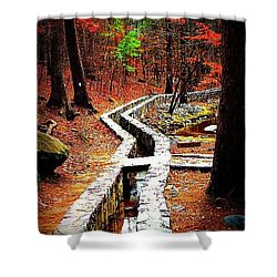 Shower Curtain featuring the photograph A Walk Through The Woods by Tara Potts