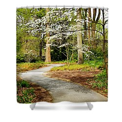 Shower Curtain featuring the photograph A Walk To Remember by Trina  Ansel