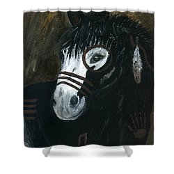 A War Pony Shower Curtain