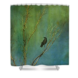 A Watchful Eye Shower Curtain
