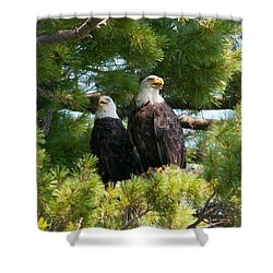 A Watchful Pair Shower Curtain