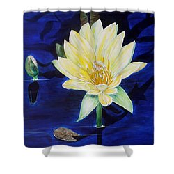 A Waterlily Shower Curtain by Marilyn  McNish