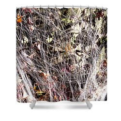 Shower Curtain featuring the photograph Web Of Leaves by Kellice Swaggerty