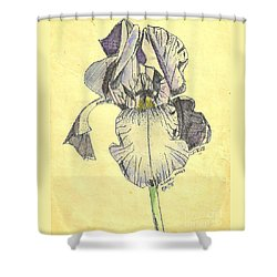 Shower Curtain featuring the photograph A Wild Lavender Louisiana Iris by Michael Hoard