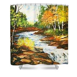 A Winding Creek In Autumn Shower Curtain