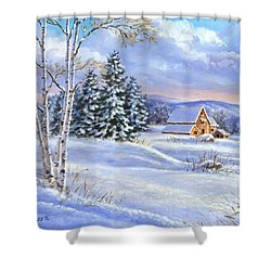 A Winter Afternoon Shower Curtain