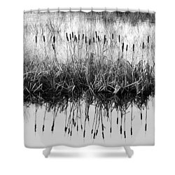 Shower Curtain featuring the photograph A Winter Bouquet by I'ina Van Lawick
