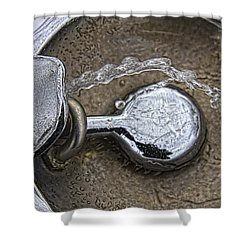 A Winter Drink Of Water Shower Curtain