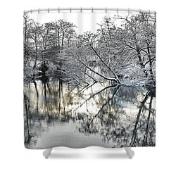 A Winter Scene Shower Curtain