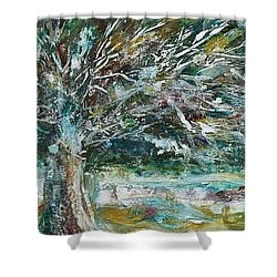 A Winter Tree Shower Curtain by Mary Wolf