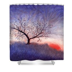 A Wintering Tree Shower Curtain