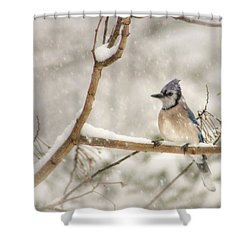 A Winter's Day Shower Curtain by Lori Deiter