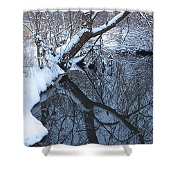 A Wintry Reflection Shower Curtain by Rita Mueller