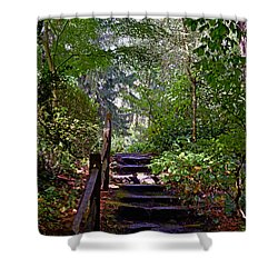 A Wooded Path Shower Curtain
