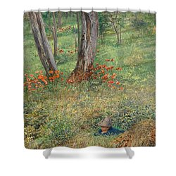 A Woodland Hideout  Shower Curtain by Giovanni Costa