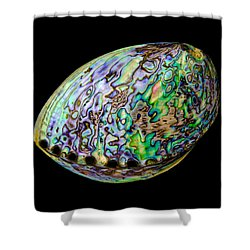 Abalone Shell Shower Curtain by Jim Hughes