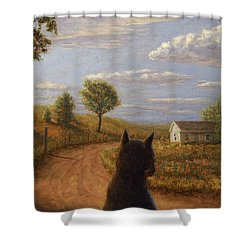 Abandoned House Shower Curtain by James W Johnson