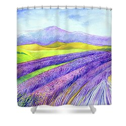 Abbey Fields At Senanque Shower Curtain