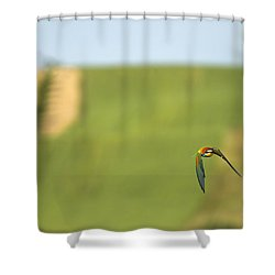 Abejaruco En Vuelo Shower Curtain by Guido Montanes Castillo