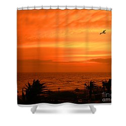 Ablaze Shower Curtain by Mariarosa Rockefeller