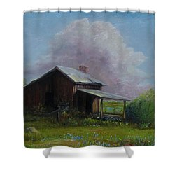 Abondoned Memories  Shower Curtain