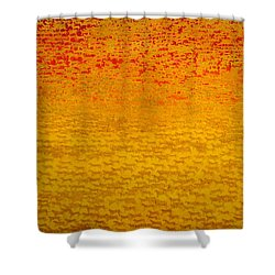 About 2500 Tigers Shower Curtain